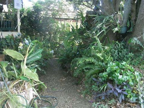 Grafton Rose Garden 2